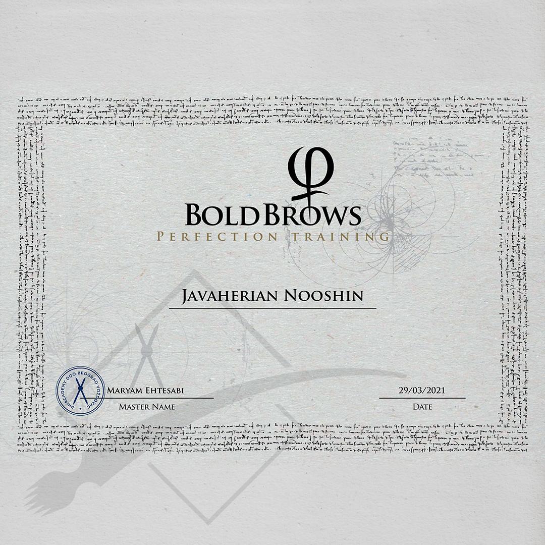 Nooshin's Perfection Training Certificate