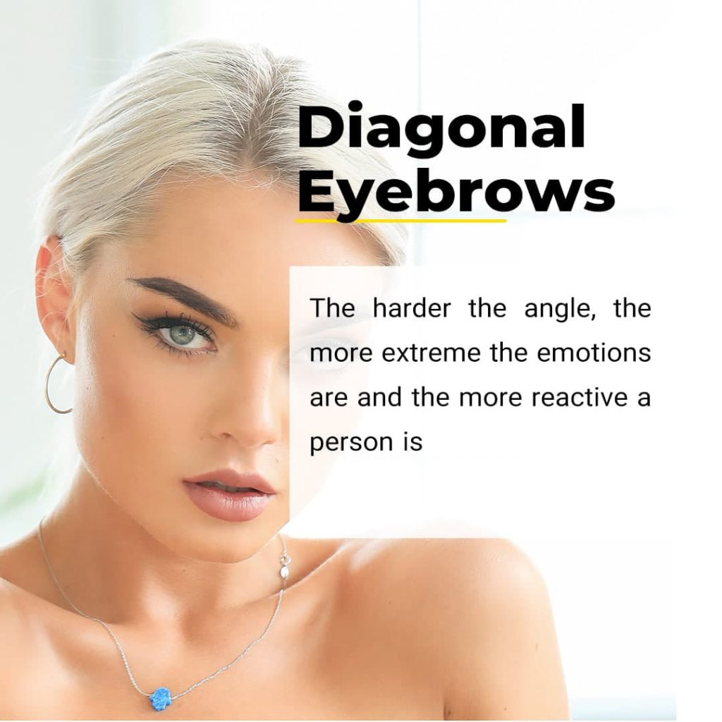 What Your Brow Shape Says About You(According to a Facial Reader) – Tips and Tricks – Canada Makeup – Brow Shape – photo 2021 08 31 15 10 26 – Canada Makeup – NOOSHIN JAVAHERIAN
